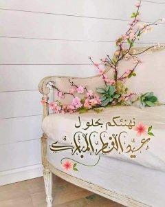 FB_IMG_1620885852427.jpg